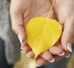 Как защитить руки осенью?